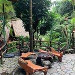 Foto van Kampung Daun
