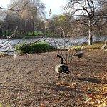 Foto de St. James's Park