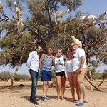 On a journey to Essaouira