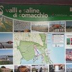 valli di Comacchio, pianta