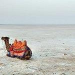 Ảnh về Kutch Resort