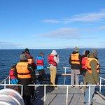 Pasajeros disfrutando de la vista a las islas en búsqueda de ballena Sei
