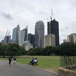 صورة فوتوغرافية لـ Royal Botanic Garden Sydney