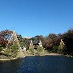 181215撮影 日本庭園