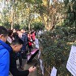 成都人民公園照片