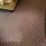 Arora Hotel Gatwick / Crawley Photo