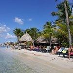 LionsDive Beach Resort Resmi