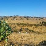 Foto di Tomba di Nabi Ayoub