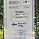 Admission price to Epidaurus Theatre.