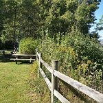 Anthony Provincial Park Picnic Area and View