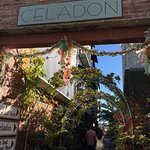 Foto de Celadon