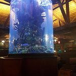 Foto de Islamorada Fish Company