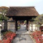 多聞寺の山門(茅葺き)