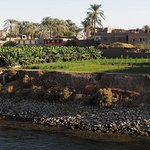 Sceneries along the Nile - Bananas plantation and typical local houses