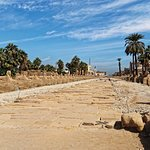 Photo of Aswan Individual - Daily Tour