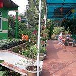 Dong Du Village  Eco Farmstay