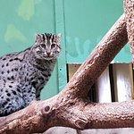 Foto de Prague Zoo