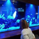 Billede af Waterfront Restaurant