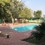Pool - The Chitvan Resort Photo