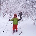 スノーシューで冬の森をお散歩 雪の季節しか見られない景色やとっておきの穴場へ