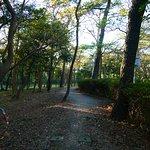 千本松原の遊歩道