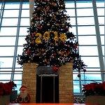 空港、JAL、ANAそれぞれのクリスマスツリー