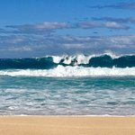 Enjoying Big Wave Season on the North Shore of Oahu.