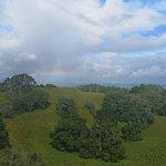 Photo de One Tree Hill (Maungakiekie)