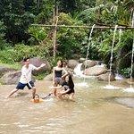 Rain Forest Inn Photo