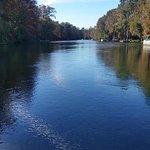 Billede af Rainbow River Canoe and Kayak