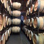 Foto de Frog's Leap Winery