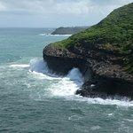 Billede af Kilauea Point National Wildlife Refuge