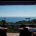 Billede af Cafe Agua Azul