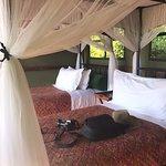 Mapula Lodge照片