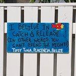 Tipsy Tuna Foto