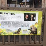 Ijams Nature Center의 사진
