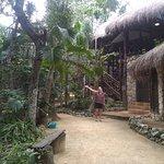 Foto van The Jungle Place - Tours