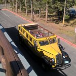 Foto de Historic Yellow Bus Tour