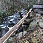 Historic Ogle Log Cabin Photo