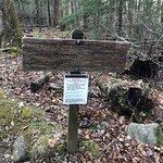 Photo de Historic Ogle Log Cabin