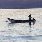 Fisherman at Dawn off the Ajijic Malecon on Lake Chapala on Christmas Day