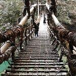 Photo of Iya Kazura Bridge