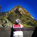 Bild från Sugar Loaf Islands and Paritutu Rock
