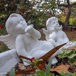 Foto de Nature Coast Botanical Gardens & Nursery