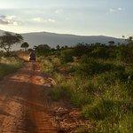 Bild från KT & Safaris