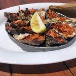 Jim Wilds Oyster Service-bild