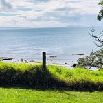 Bild från Goat Island Marine Reserve