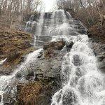 Foto de Amicalola Falls State Park