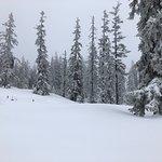 Skischule Bogei Filzmoos Photo
