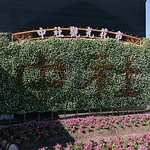 Photo of Zhongshe Flower Market